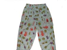 Domino Trouser Blue with bug print
