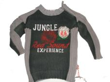 Pullover Green/grey Jungle experience